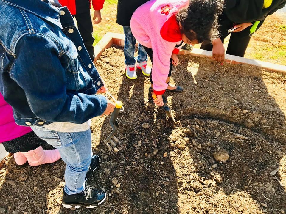 Price Head Start School Garden