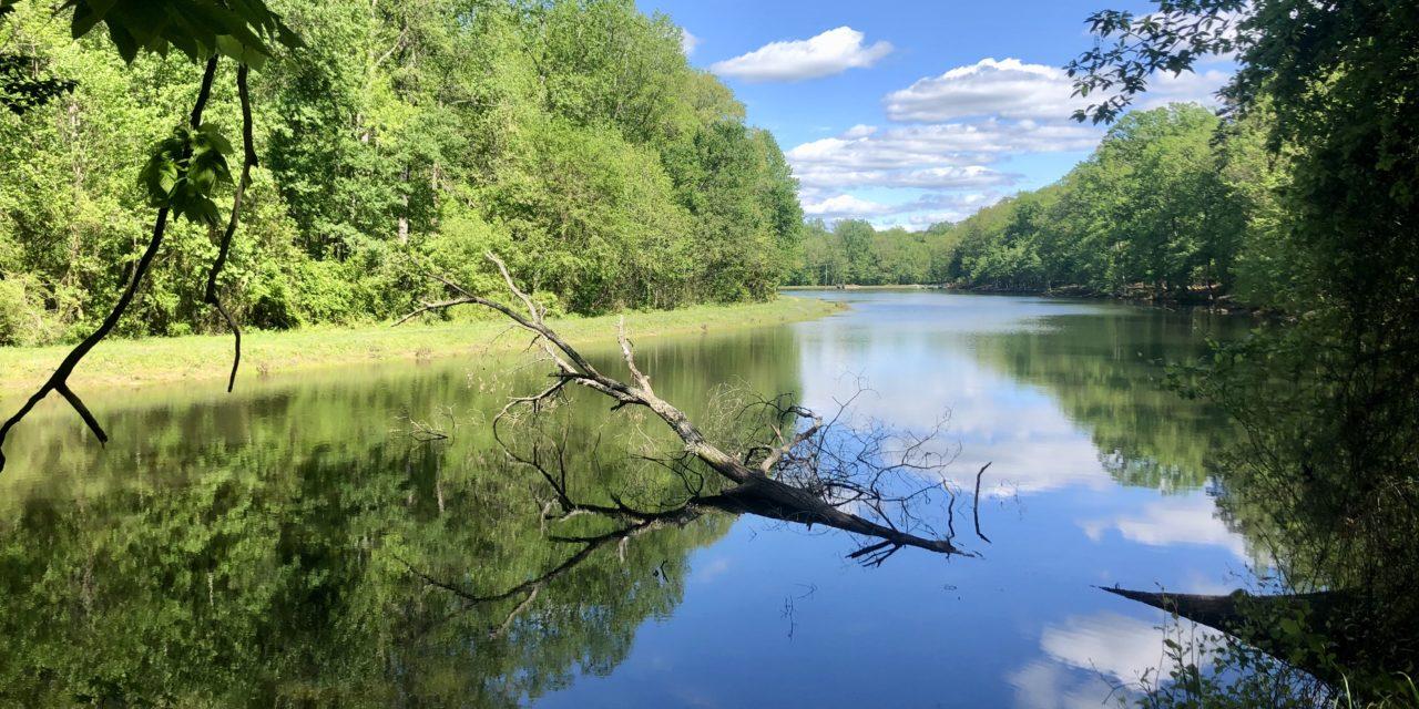 Two Beautiful Lakes to Visit in Landis, North Carolina
