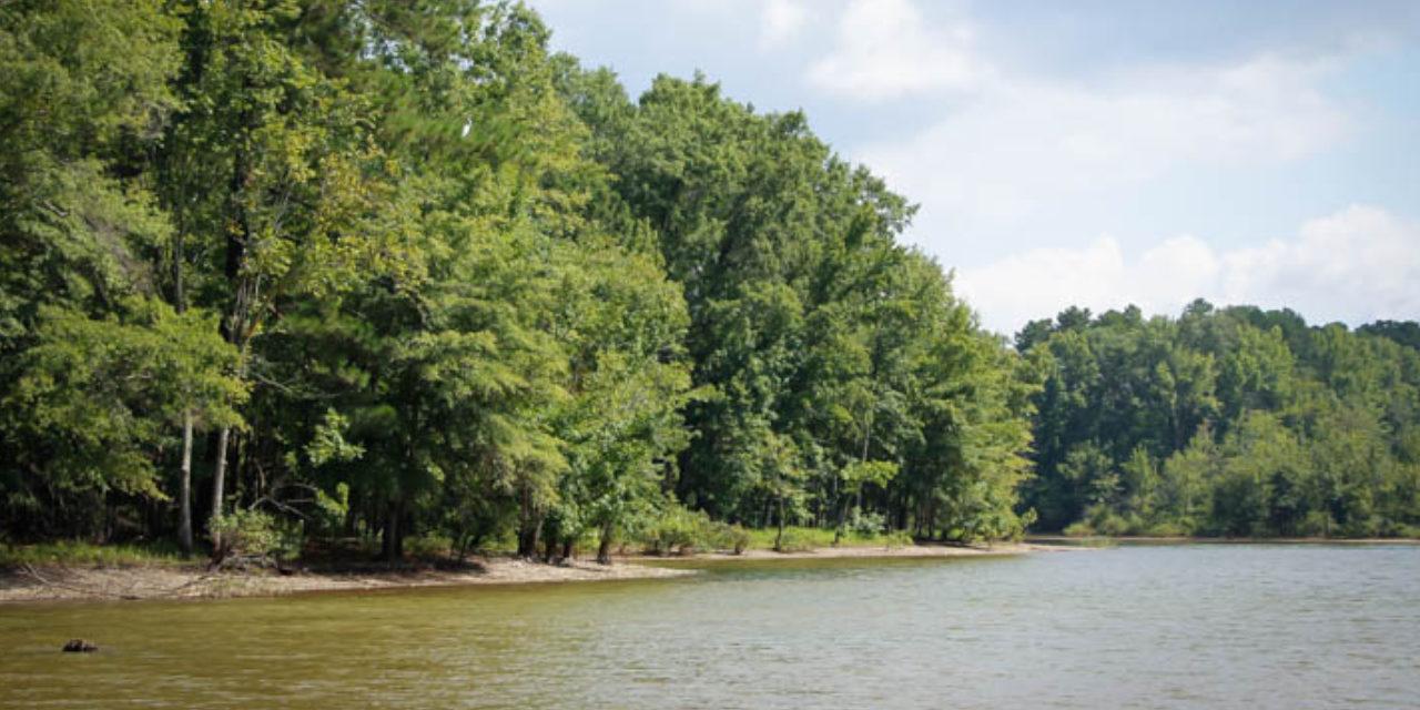 Rowan Creek Week – Celebrating Our Local Waters
