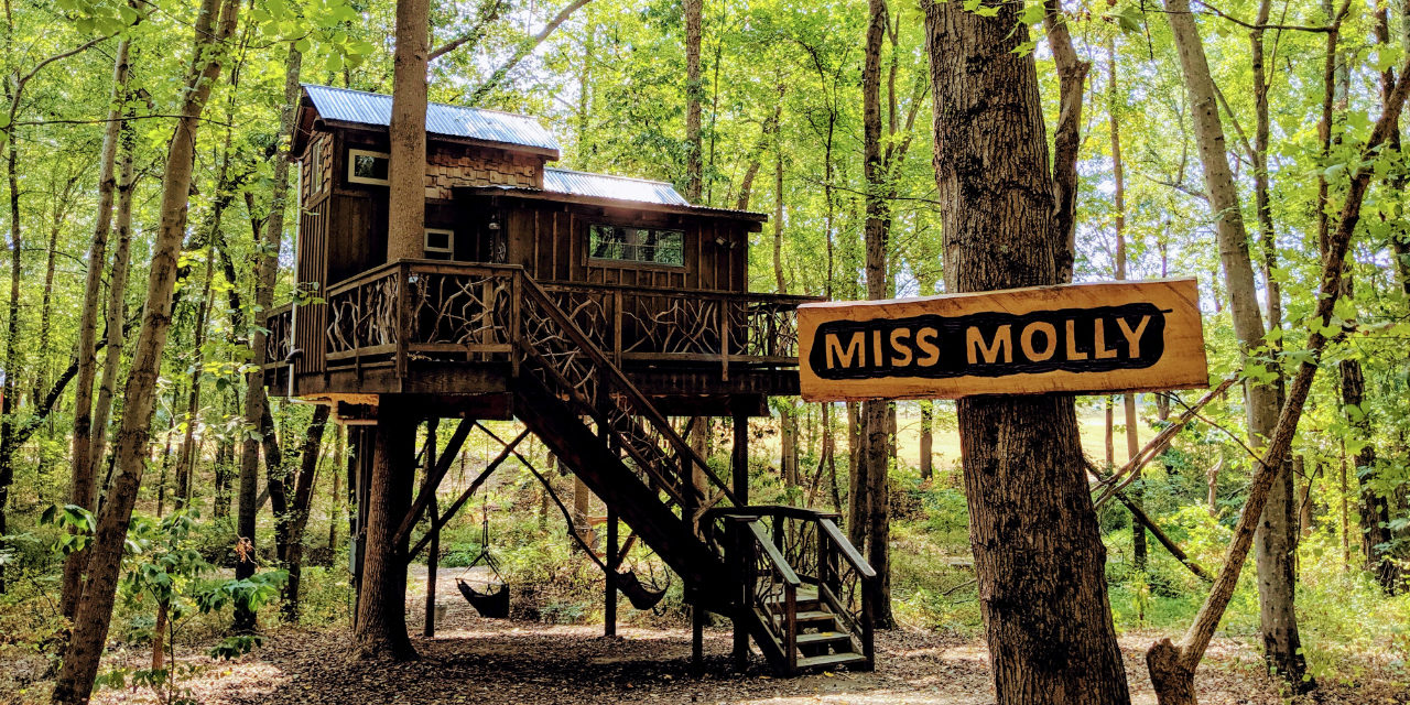 Stay in a Treehouse in Southern Rowan County