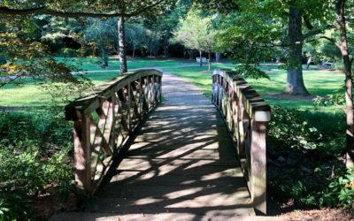 Lush & Vibrant Hurley Park