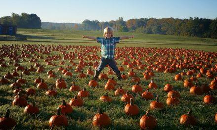 It's Finally Fall Y'all