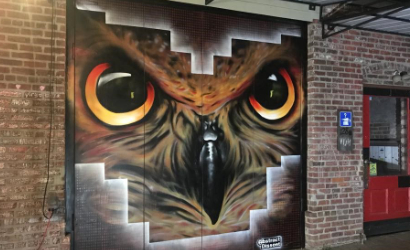 Owl Mural at the former Lost & Found in downtown Salisbury