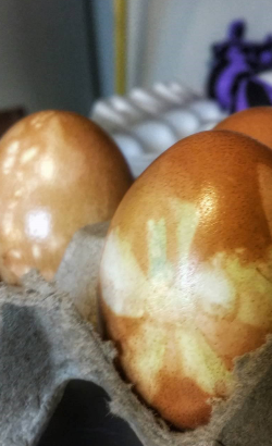 Easter Eggs Dyed with Natural Food Coloring