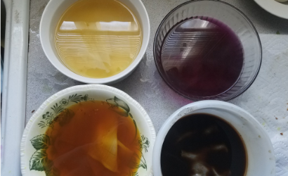 Natural dyes derived from foods