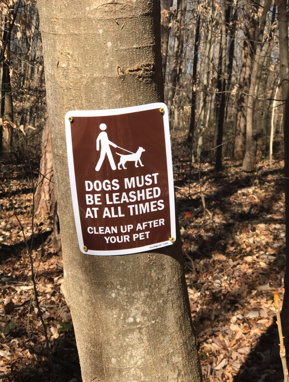 All dogs must be leashed sign on a tree