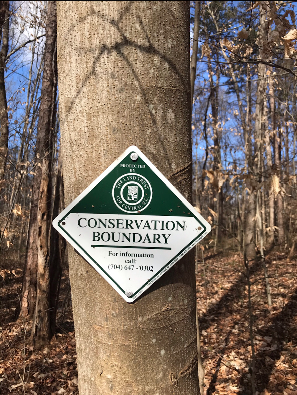 Conservation Boundary Sign on tree