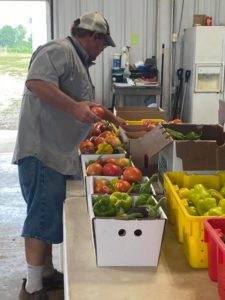 Man creating delivery boxes at Correll Farms